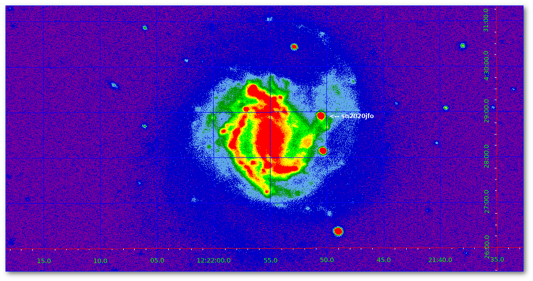 Supernova in M 61 ( sn2020jfo )